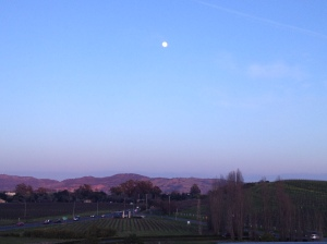 Moonrise at Domaine Carneros.