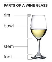 wine glass diagram