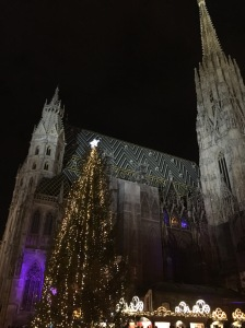 Stephansdom at night.